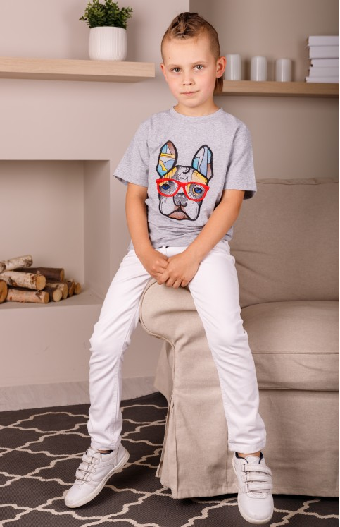 Дитяча футболка Casual Стиляга (сіра) – купити в Україні від Галичанка фото 1