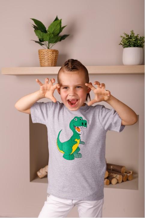 Дитяча футболка Casual Динозаврик (сіра) – купити в Україні від Галичанка фото 1